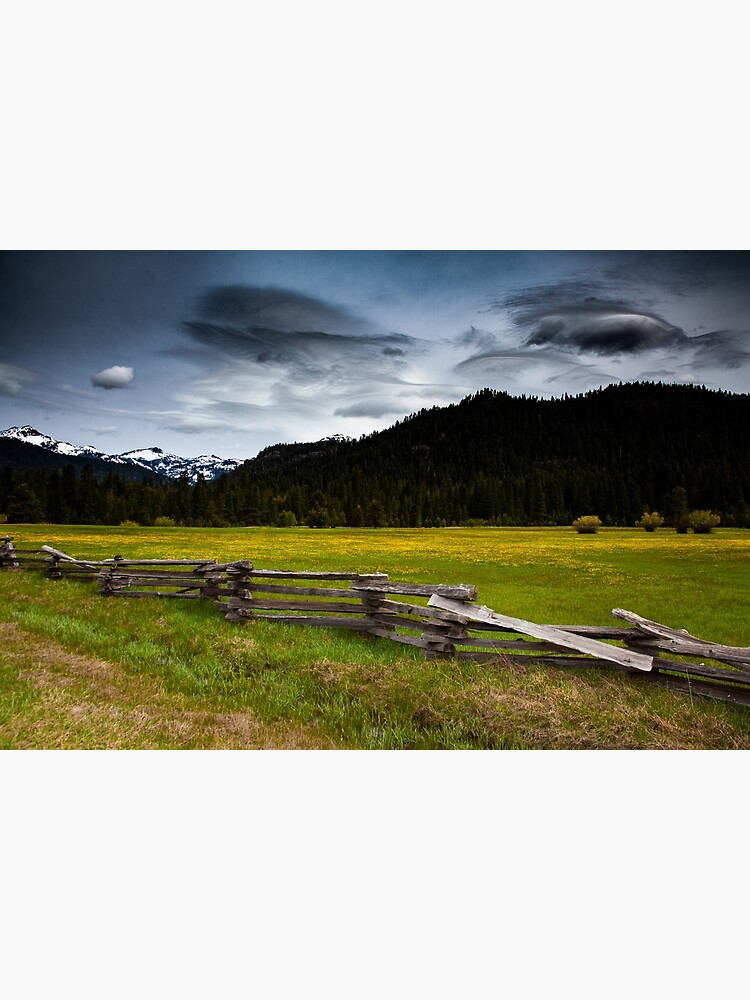 A field of view - Lassen National Forest by designfly