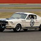 Shelby Mustang 350 GT (N & H Whale) by Willie Jackson