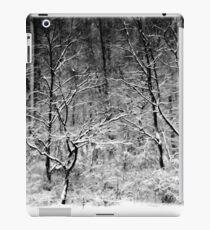 Winter Snow Trees iPad Case/Skin