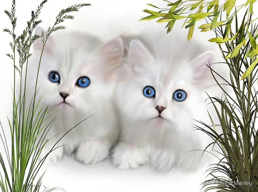 Kittens ..  by Elaine Manley