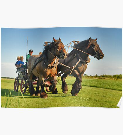 A ride with horses and cart Poster