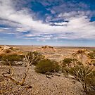 Looking South - Painted Desert - South Australia by Jeff Catford