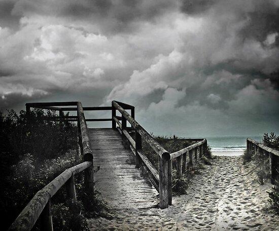 cabarita beach by carol brandt