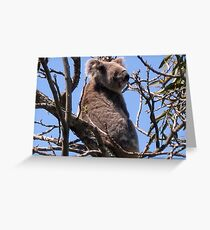 I am in your tree !  Greeting Card