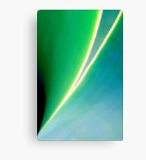 Green and Blue and Graceful Lines Canvas Print