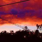 Sunset Wonder by Michael T