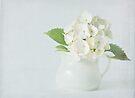 Little white jug by inkedsandra