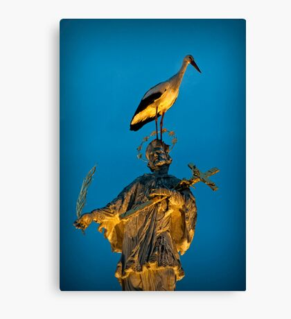 The stork has landed Canvas Print