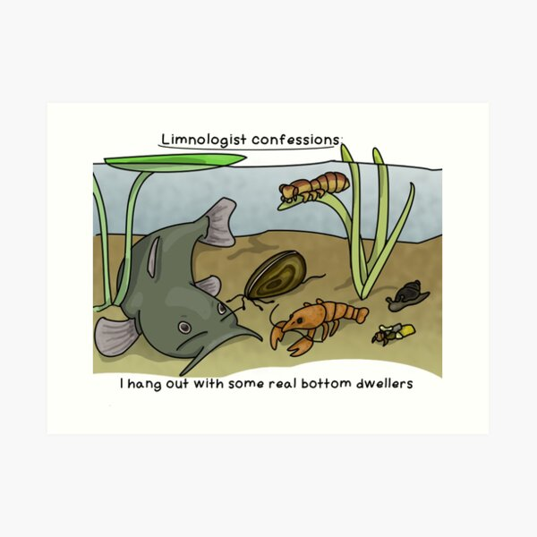 Limnologist confessions Art Print
