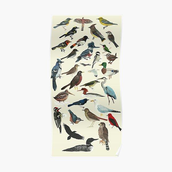 Bird Fanatic Poster