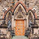 The Back Door by Wanda Staples