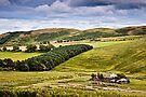 Wether Hill, Ingram, Northumberland, UK by David Lewins