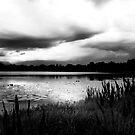 stormy_saturday by james smith