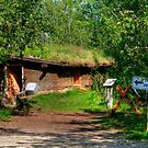 Pioneer Sod House by Larry Trupp