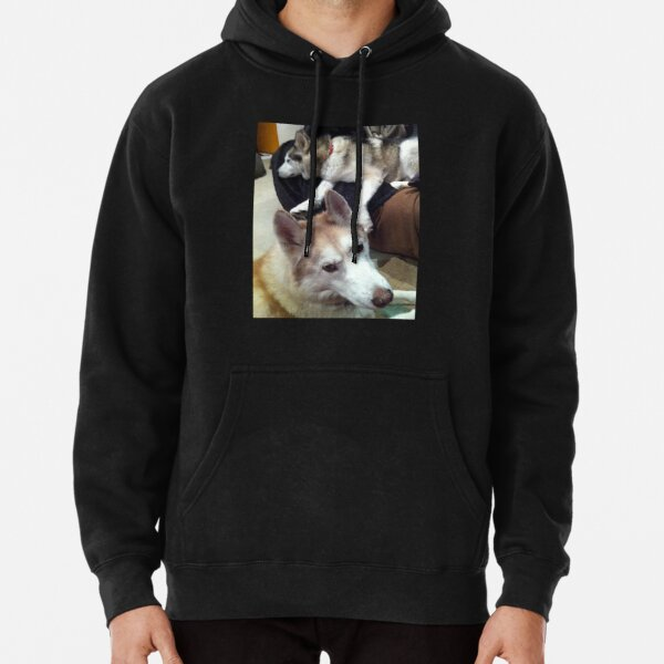 The Other Dog Is Up To Something Pullover Hoodie