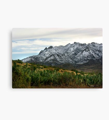 Winter in the Florida Mountains ~ New Mexico USA Canvas Print