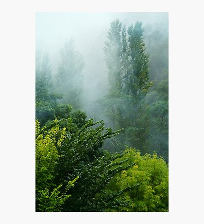 Rolling Mist Photographic Print