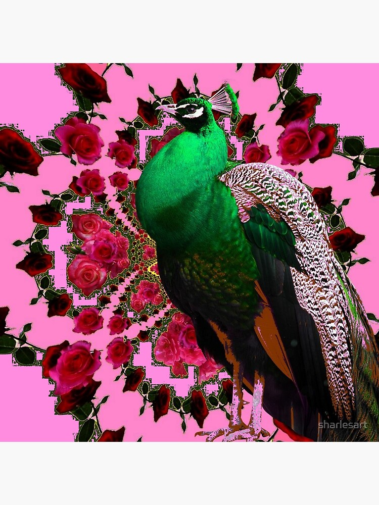 PINK ART DECO GREEN PEACOCK PINK ROSES ART by sharlesart