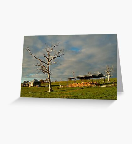 Rowsely Valley Farm Greeting Card
