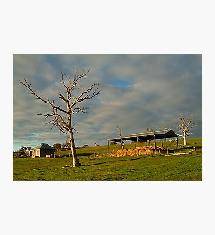 Rowsely Valley Farm Photographic Print
