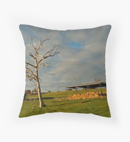 Rowsely Valley Farm Throw Pillow