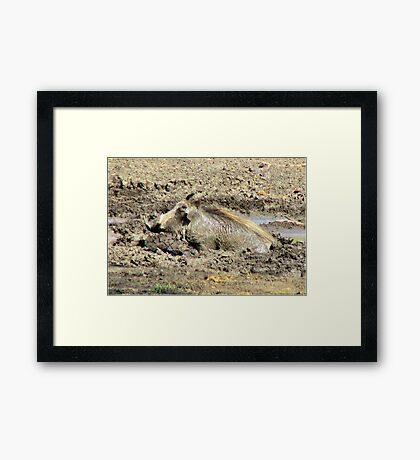 HOW'S THIS FOR A BEAUTY BATH! Framed Print