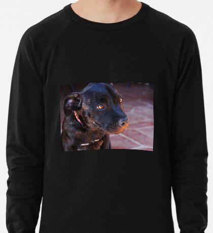 Milly # 2 Leichtes Sweatshirt