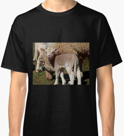 Kleines Lamm Classic T-Shirt