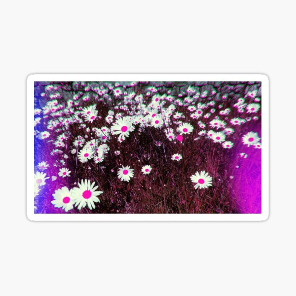 Psychedelic Trippy Blue and Pink Daisies Sticker