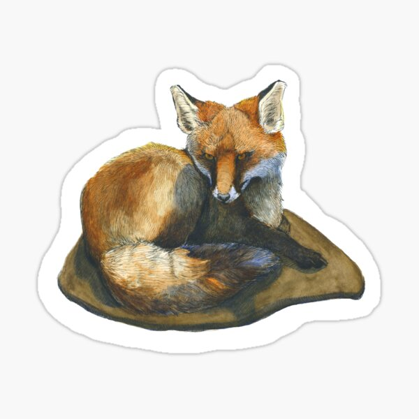 Fox in Ink and Watercolour Sticker