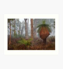 Fog In Frankland Bush Art Print