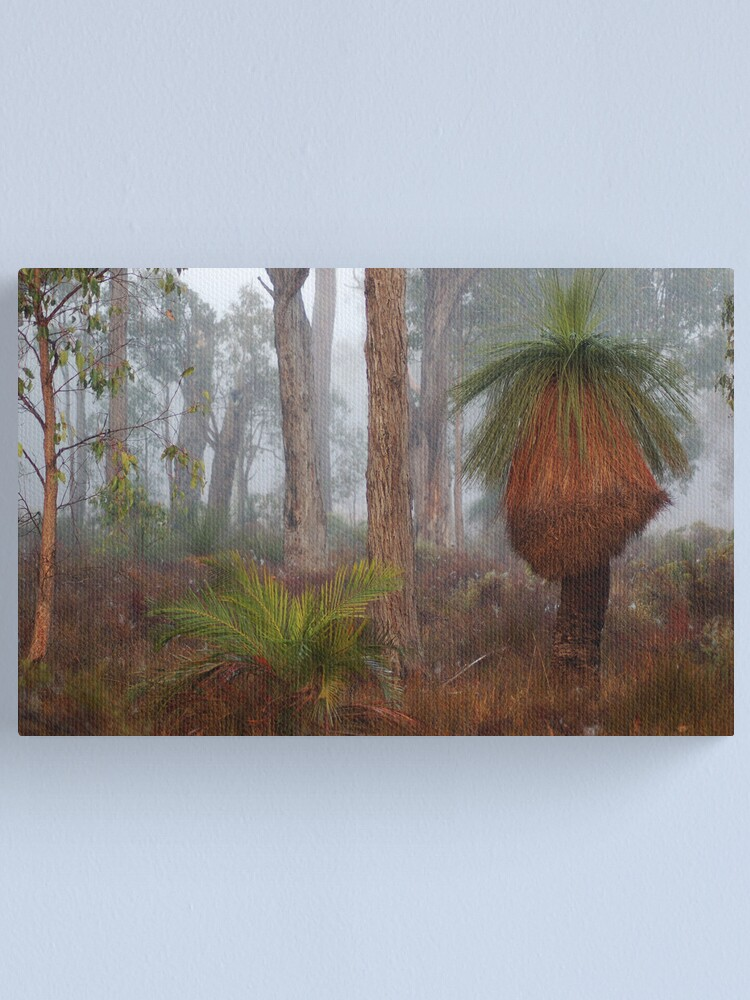 Alternate view of Fog In Frankland Bush Canvas Print