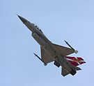 """F16 MLU Royal Danish Air Force """"Slow Pass"""" by SWEEPER"""