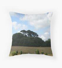 A Italianate Landscape Throw Pillow