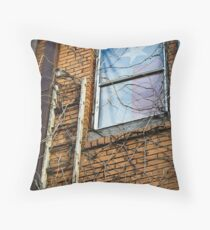 Texas Drapes Throw Pillow