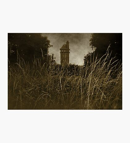 West Park - The Tower Photographic Print
