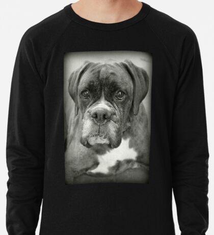 Ist das für mich? .... Boxer Dogs Series Leichtes Sweatshirt