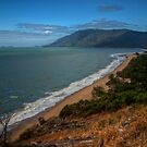Panoramic view from Rex lookout, Queensland by Andrea Rapisarda
