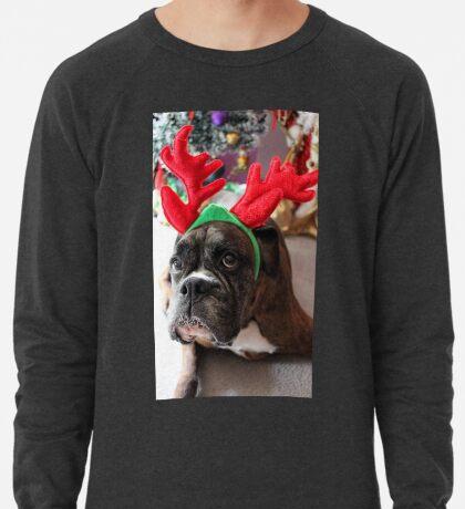 Rentier dieses Jahr? ...... Alles für dieses Plätzchen! - Boxer-Hunde-Reihe Leichtes Sweatshirt