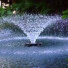 Sun City Fountain by Antionette