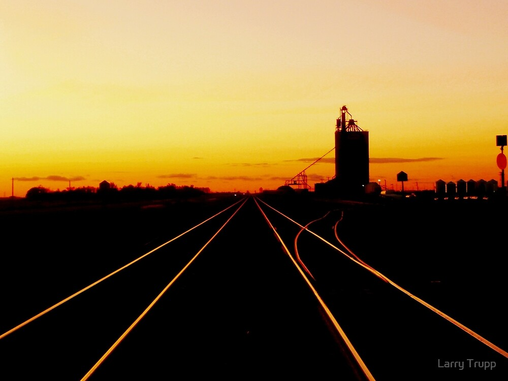Diminishing Rails by Larry Trupp