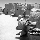 Ancient Homes Of The Desert by Susan McKenzie Bergstrom