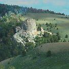 Castles of Telegraph Peak by Arla M. Ruggles
