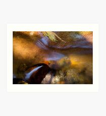 The colors of summer cool... Art Print