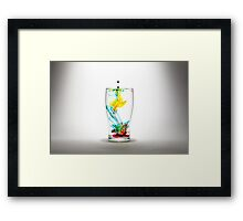 Lophorina Framed Print