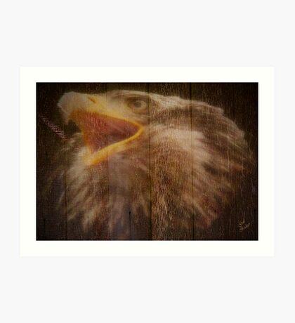 Eagle Fence Art Print