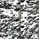 Snow from above by DRONY