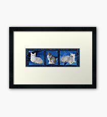 Furry Friends Framed Print