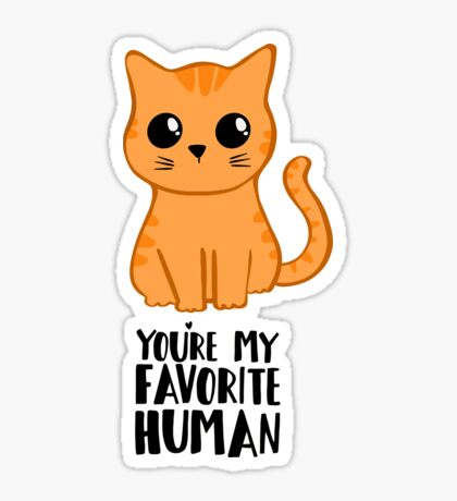 You're my favourite human - Ginger Cat - Shirt from the cat Sticker