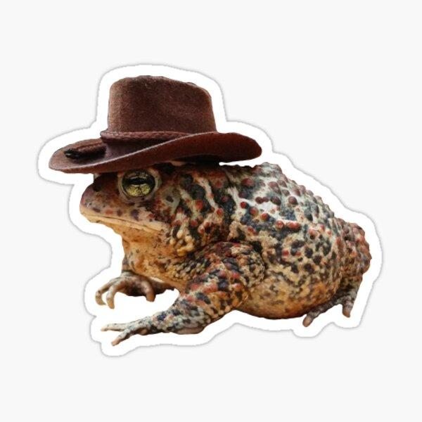 yeehaw frog Sticker